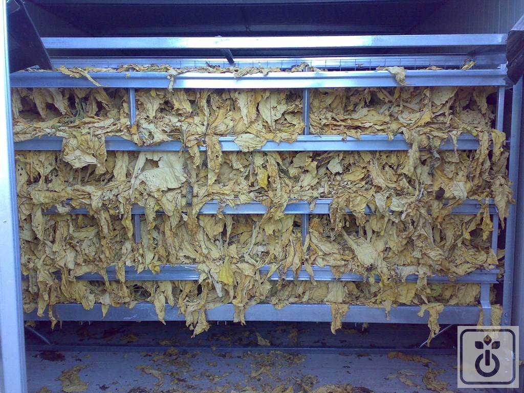 Gome HTR Containers-for-tobacco-dryers-GOME-Hi-Tech-Resource-12
