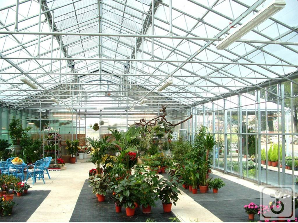 Gome HTR SPRING-TIME-glass-greenhouse-for-production-garden-center-farm-sheds-GOME-Hi-Tech-Resource-1