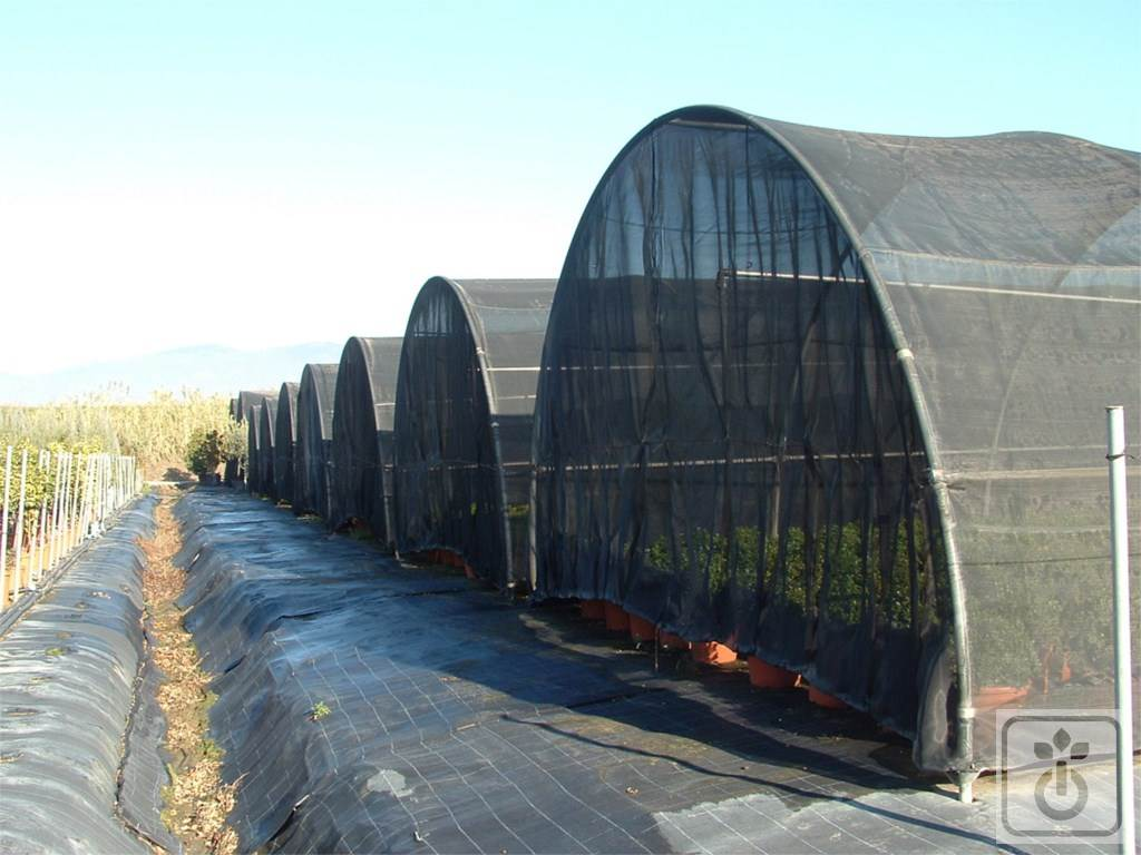 Gome HTR ORTOFLORA_tunnel-for-vegetable-crops-shadow-and-leisure-GOME-Hi-Tech-Resource-4