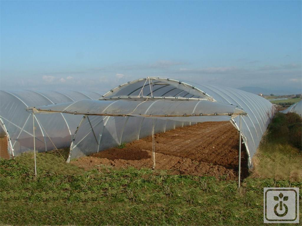Gome HTR ORTOFLORA_tunnel-for-vegetable-crops-shadow-and-leisure-GOME-Hi-Tech-Resource-5