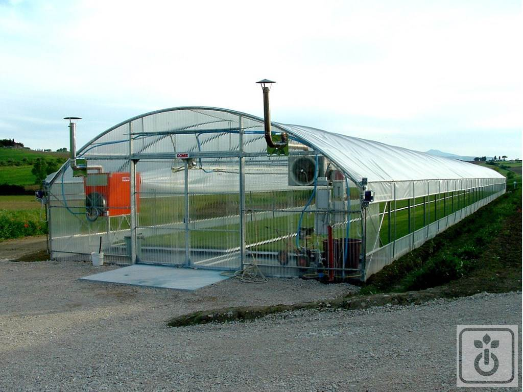 Gome HTR TAG60B-plastic-tunnel-for-production-of-plants-and-vegetables-GOME-Hi-Tech-Resource-1